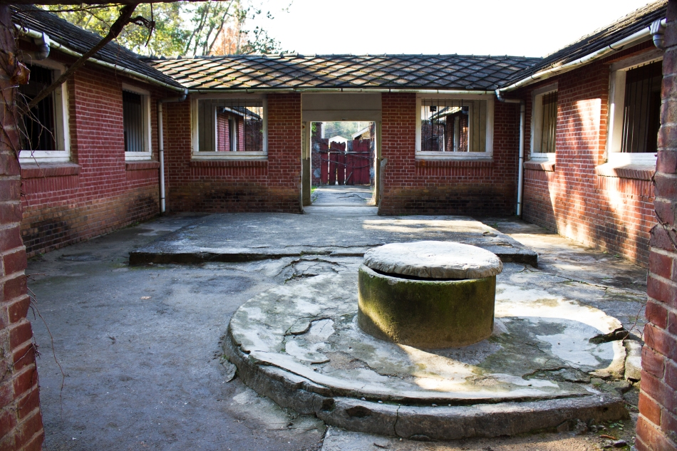 sorokdo rehab center courtyard