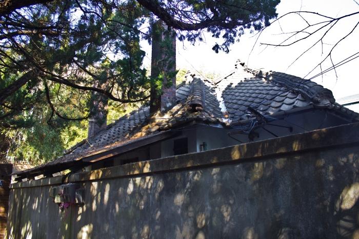 janggundon hill house roof
