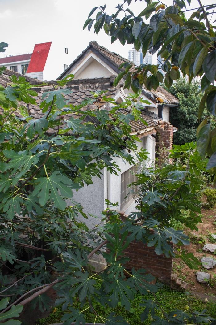 masan hillhouse